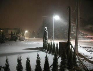A snowy cold blowing picture...this comes from the west coast of Canada and is a very rare sight!