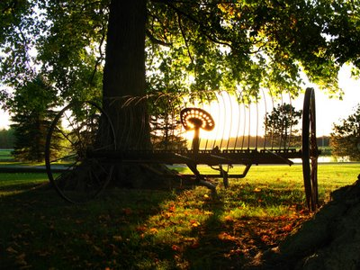 The Autumn Colors in Brome highlight the lovely antique farm machine sitting in a field.