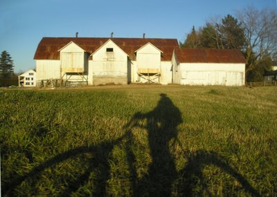The long shadows of fall turn a bike ride in the fields of Knowlton into a dramatic photo