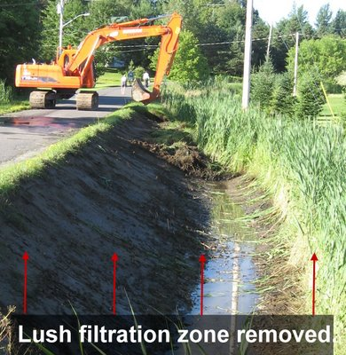Send in the machines! The Town says it wants to help Brome Lake but still tears out essential filtering marshes? This picture shows how the Town caved in to one resident who felt the tall growth in the brook near his property should be removed!