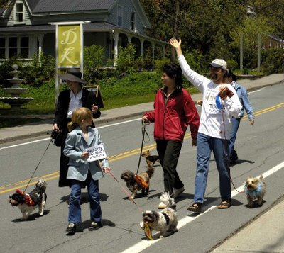 The Dog Show coming down Lakeside is always fun as the puppies always are eager to put their best paw foreward!