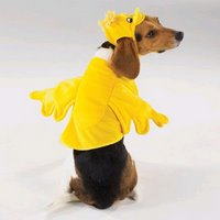 Even pets will be forced to wear duck costumes at all times!