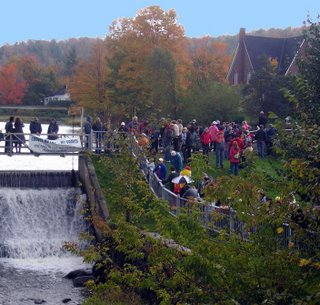 Crowds gathered early for the First Knowlton Duck Race