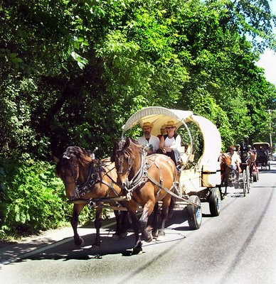 Horse and carriage sightings are commonplace as villagers enjoy the slow pace of fays gone by!