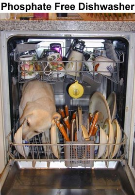If detergents are the problem then perhaps we need some phosphate free dishwashers!