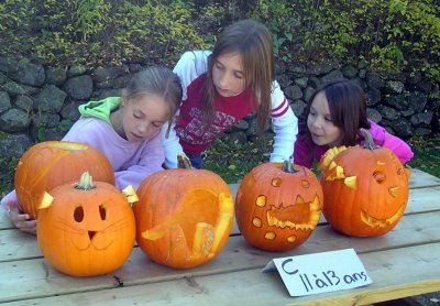 The Pumpkin Carving Event sponsored by the Brome Lake Chamber of Commerce was held on Saturday. The park was full of families and kids carving some spooky and funny pumpkins.